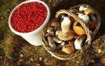 Введут ли лицензию и налоги на сбор лесных ягод и грибов?